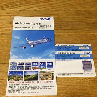 エーエヌエー(ゼンニッポンクウユ)(ANA(全日本空輸))のANA 株主優待券 2枚 2020年5月31期限(その他)