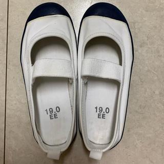 ムーンスター(MOONSTAR )の上靴 19.0cm(スクールシューズ/上履き)