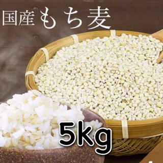 国産 もち麦 5kg(米/穀物)