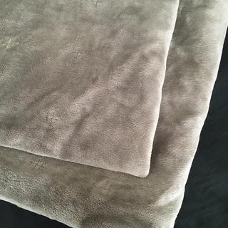 ムジルシリョウヒン(MUJI (無印良品))の無印 洗えるラグ ホットカーペット、こたつ下敷 205×245cm(カーペット)