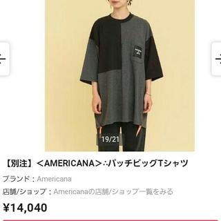 アメリカーナ(AMERICANA)のAmericana×BEAUTY&YOUTH T-shir(Tシャツ(長袖/七分))
