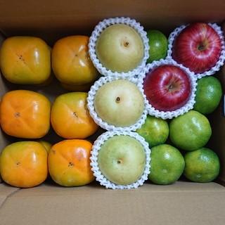 ★送料込み★ 旬の果物 豪華フルセット【柿・梨・りんご・みかん】(フルーツ)