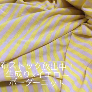 【コットンジャージー】たっぷり生成り×イエローボーダー(生地/糸)