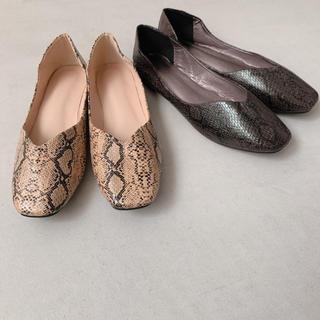 トゥデイフル(TODAYFUL)のPython Flat shoes(バレエシューズ)
