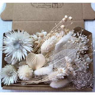 可愛い花材の詰め合わせ♡オフホワイト(ドライフラワー)