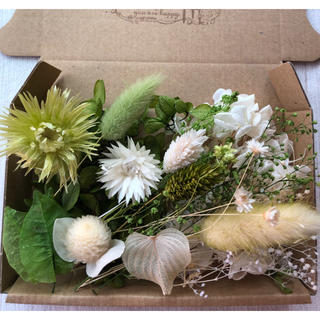 可愛い花材の詰め合わせ♡ホワイト&グリーン(ドライフラワー)