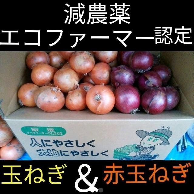 北海道産 減農薬 玉ねぎ 赤玉ねぎ セット 食品/飲料/酒の食品(野菜)の商品写真
