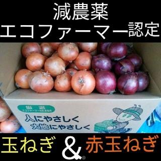 北海道産 減農薬 玉ねぎ 赤玉ねぎ セット