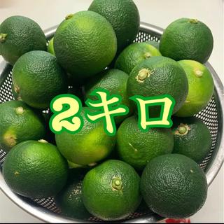 徳島県神山産  すだち2キロ