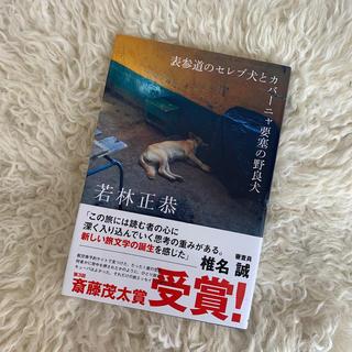 角川書店 - 表参道のセレブ犬とカバーニャ要塞の野良犬