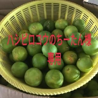 🌟Lサイズ徳島県神山産すだち無農薬1キロ強40個以上入🌟速達送料込🌟先着