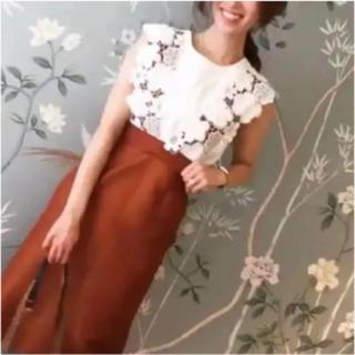 チェスティ(Chesty)のチェスティ  2way Lace Junper Skirt cesty サイズ1(ひざ丈スカート)