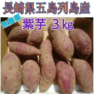無農薬❗紫芋(さつまいも)3㎏。長崎県 五島列島より(野菜)