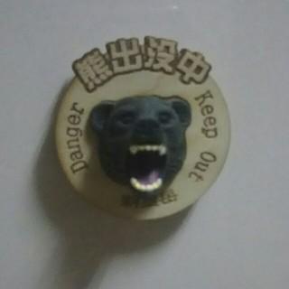 マグネット 熊