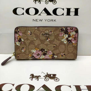 COACH - COACH コーチ 長財布 新品 31651 小銭入れ