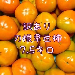 奈良県五條市産 刀根早生柿 7,5kg