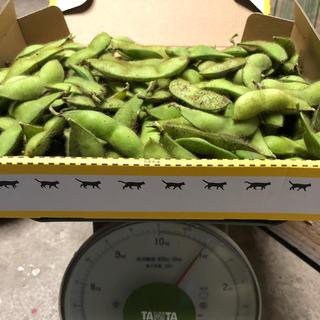 兵庫県丹波産  黒枝豆  2キロ(野菜)
