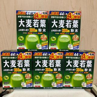 大麦若葉 青汁 山本漢方 ヤマカン  5箱分