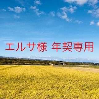 【エルサ様 年契専用】令和2年度 コシ中粒米25kg③こまち精米25kg⑥(米/穀物)