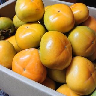 ●送料込み●和歌山県産 たねなし 柿 平核無柿 5kg