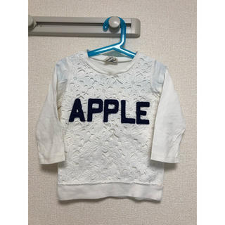 レディーアップルシード(REDDY APPLESEED)のBREEZE ブリーズ レディアップルシード 七分袖 カットソー トレーナー(Tシャツ/カットソー)