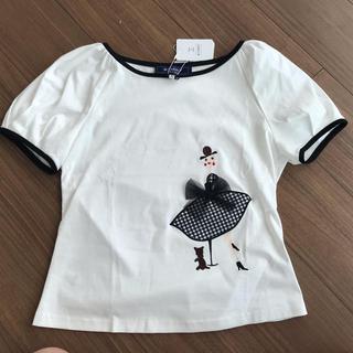 エムズグレイシー(M'S GRACY)のエムズグレイシー Tシャツ カットソー 38(カットソー(半袖/袖なし))
