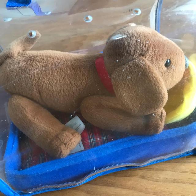 マドレーヌちゃんの犬 キッズ/ベビー/マタニティのおもちゃ(ぬいぐるみ/人形)の商品写真