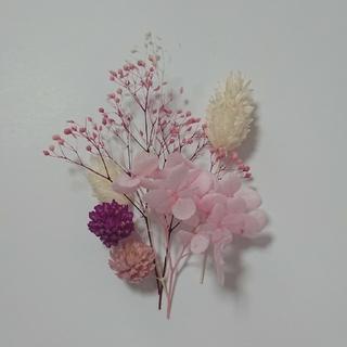 ピンク系 花材 少量セット 詰合せ ハーバリウム アロマワックス ドライフラワー(ドライフラワー)
