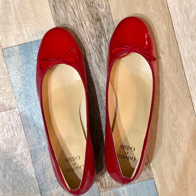 Odette e Odile(オデットエオディール)のOdette e Odile バレエ パンプス 赤 24cm レディースの靴/シューズ(バレエシューズ)の商品写真