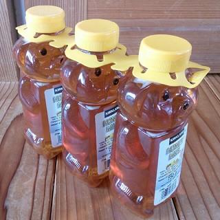 コストコ - コストコ ハチミツ 3個セット