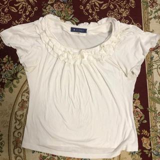 エムズグレイシー(M'S GRACY)のエムズグレーシカットソー(Tシャツ(半袖/袖なし))