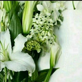 シロ(shiro)のmomi様〘 新品〙shiro  18gホワイトリリー 練り香水♡ショッパー付(香水(女性用))