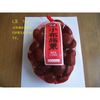 信州 小布施栗 L玉1㌔ 2300円( ラ1)(フルーツ)