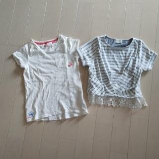ネクスト(NEXT)のNEXT 女の子 可愛いTシャツ 120~130センチ(Tシャツ/カットソー)