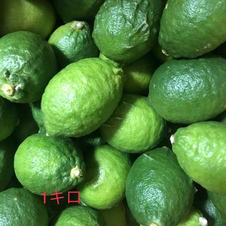 広島県無農薬レモン(フルーツ)