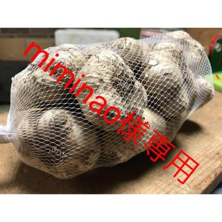 miminao1635様専用 2kg 福地ホワイト 青森県産にんにく(野菜)