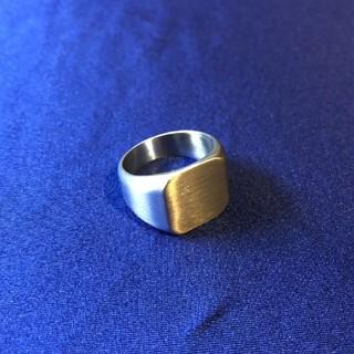 【ラスト1点】ステンレス製 印台リング カレッジリング US12号(リング(指輪))