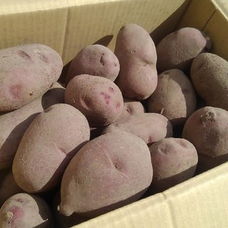 NANA7さま向け 専用出品(野菜)