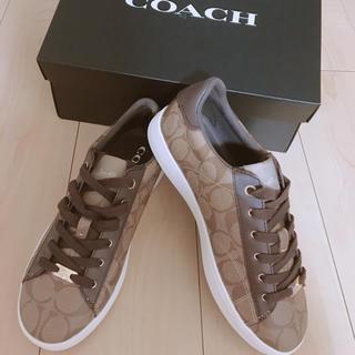 コーチ(COACH)の★coach靴★(スニーカー)