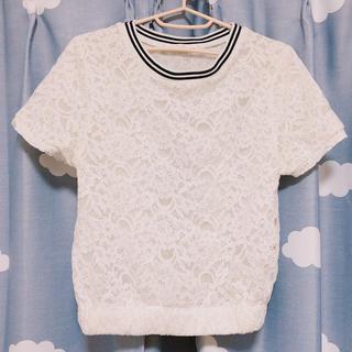ミスティウーマン(mysty woman)のライン入りレーストップス 白(Tシャツ(半袖/袖なし))