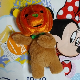 ディズニー(Disney)の** ディズニー カントリーベア ハロウィン ぬいぐるみバッジ 2019 **(ぬいぐるみ)