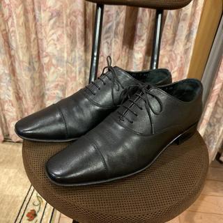 サルヴァトーレフェラガモ(Salvatore Ferragamo)の2点 Salvatore Ferragamo フェラガモ 革靴 ストレートチップ(ドレス/ビジネス)