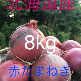 北海道産 赤たまねぎ8kg Sサイズ(野菜)