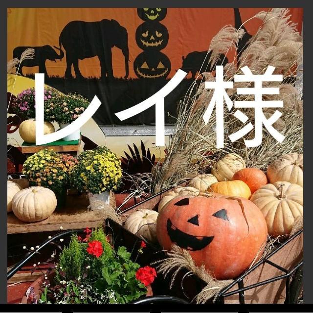 Atsugi(アツギ)のレイ様専用 キッズ/ベビー/マタニティのキッズ服女の子用(90cm~)(下着)の商品写真