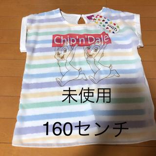 シマムラ(しまむら)の女の子 半袖 160センチ 未使用(Tシャツ/カットソー)
