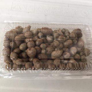 むかご 零余子 200g(野菜)