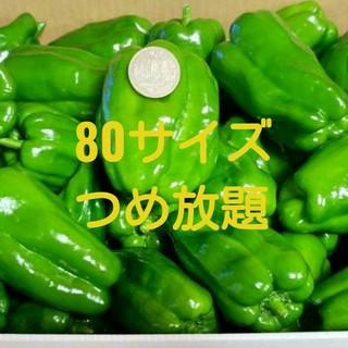 最終値下げ☆岩手県産無農薬ピーマン☆80サイズつめれるだけつめる(野菜)