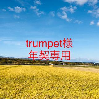 【trumpet様 年契専用19〜21時‼️】令和2年度こまち精米20Kg×5 (米/穀物)