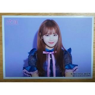 エイチケーティーフォーティーエイト(HKT48)のiz*one 好きと言わせたい 紫背景 チェウォン(K-POP/アジア)