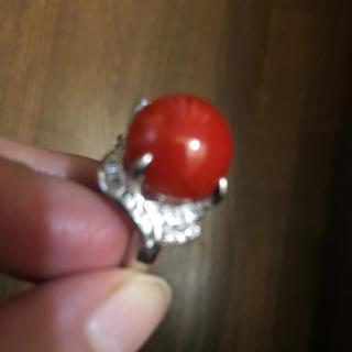 血色珊瑚 (リング(指輪))
